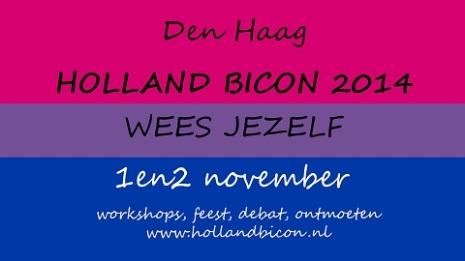 Holland BiCon 2014 A