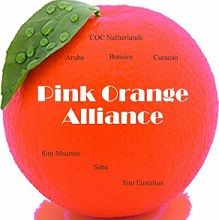 Pink Orange Alliance logo