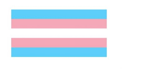 transgendervlag