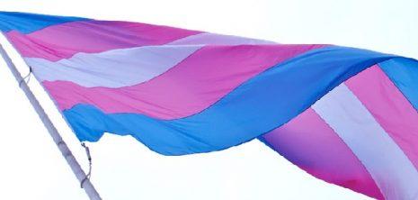 transgendervlag-wiki-cc-national_progress_party