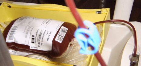 donor bloed doneren